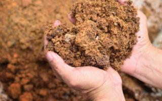 Использование древесных опилок как удобрения: способы компостирования и применения перегноя